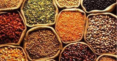 Documento de Emisiones de CO2 e importación de alimentos